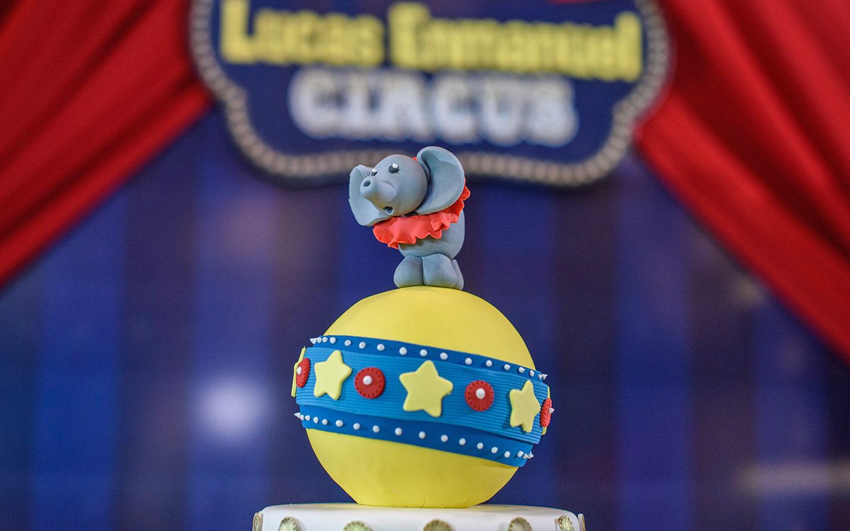 Lucas Circus Party